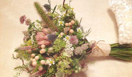 La Flor de Cerezo 2