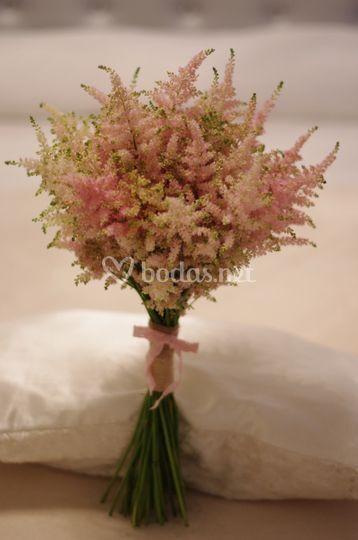 La Flor de Cerezo