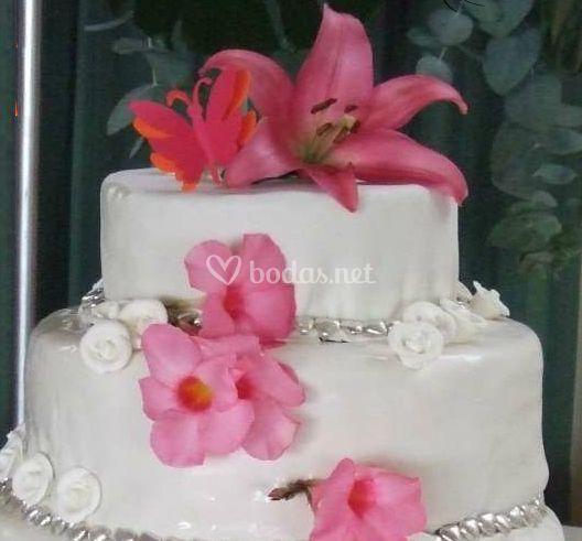 Hermosa y exquisita tarta