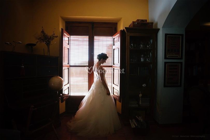 Pilar Morales Photography