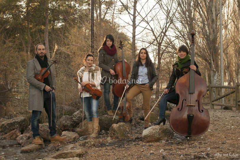 Broken String Quintet