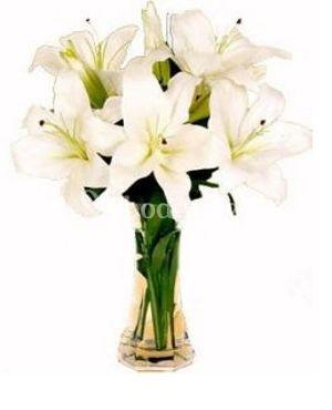 Ramo de flores liliums blancos