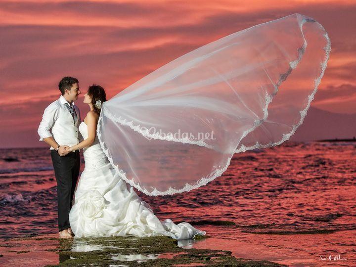 Molan Weddings