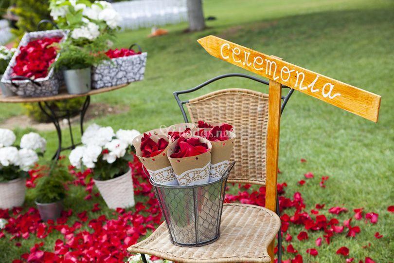 Petalos Ceremonia -  Jardines