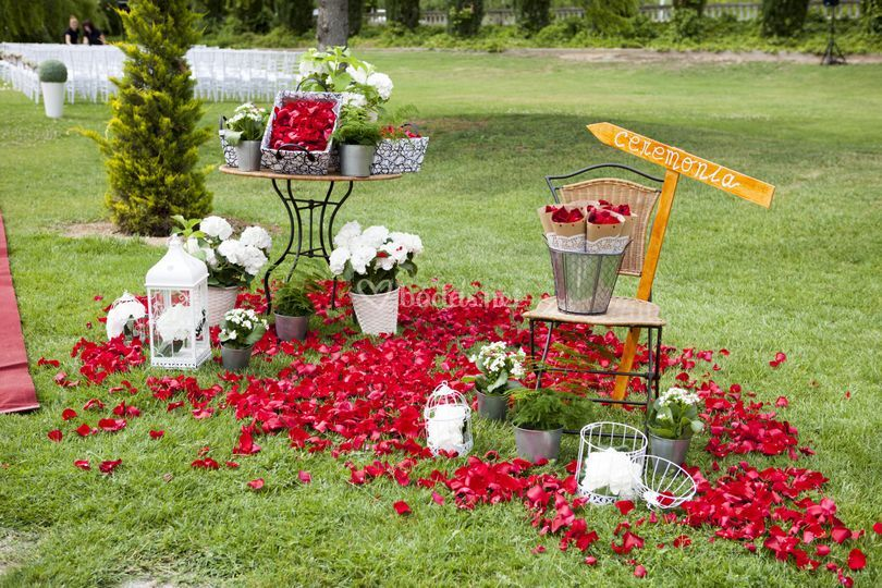 Entrada Ceremonia -  jardines