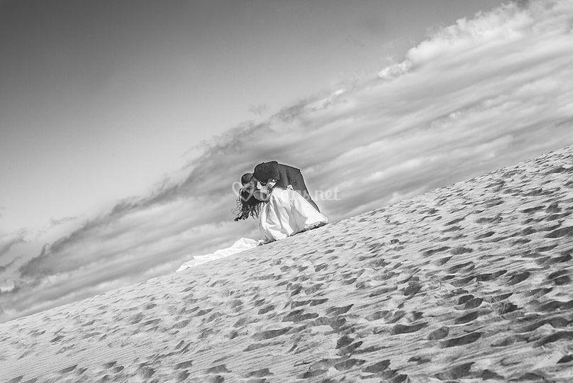 © Ulises Olivares Photography