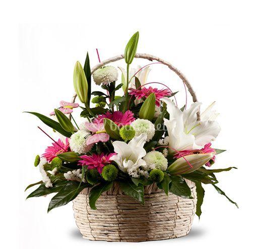 Cesta de flores, compuesta por lillium oriental, gerberas y margaritas