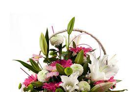 Cuadrado Flores & Plantas
