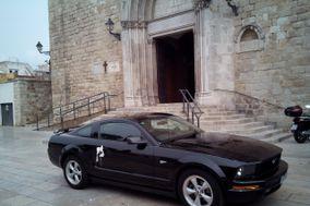 Mustang Rent