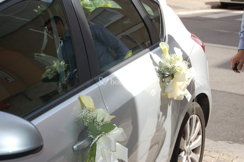 Adornos del coche