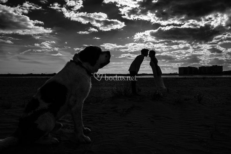 ParejoPhotos ©