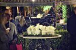 Decoraci�n jardines de Siglo Veintiuno - Grupo Rex