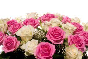 Flores por Impulso