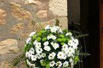 Centro floral de acogida