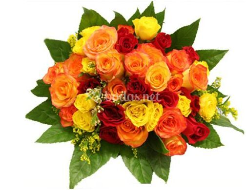 Multitud de rosas