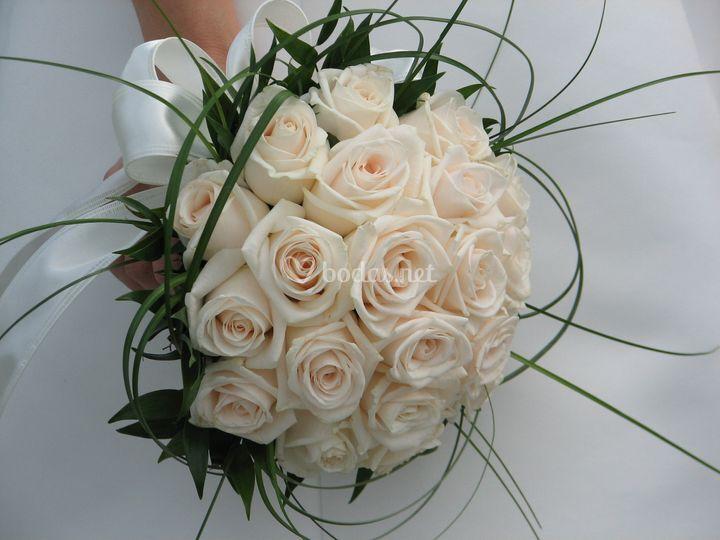 Rosas perlas