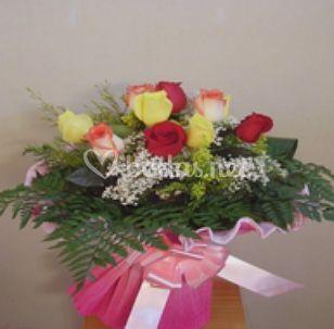 Rosas de colores