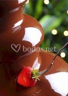 Chocolate de primera calidad