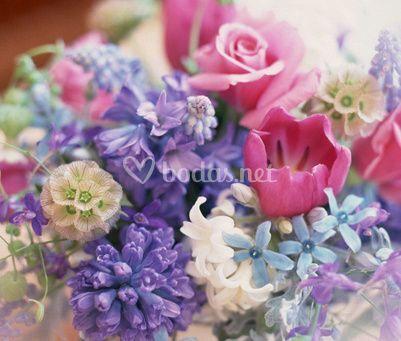 Gran surtido en flores