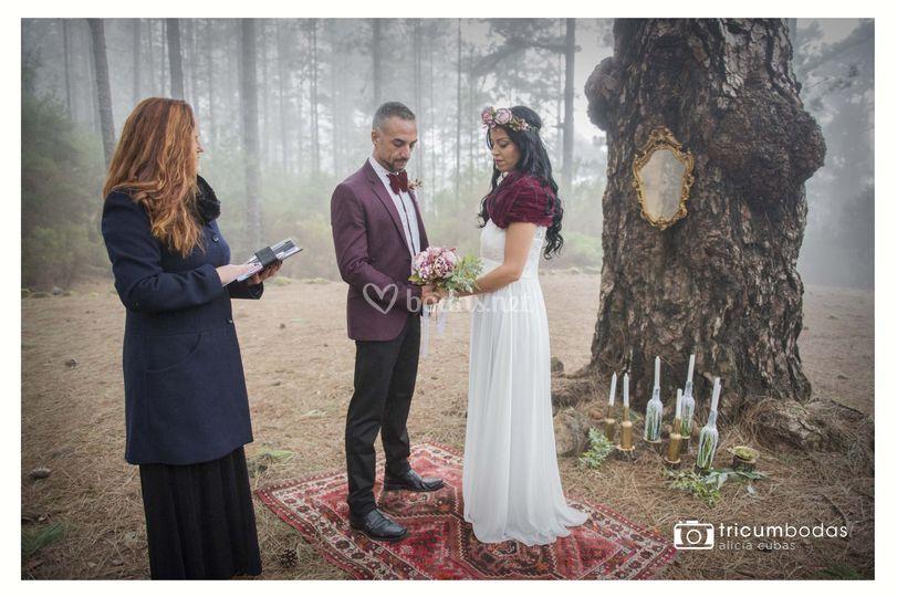 Elopements, secret wedding