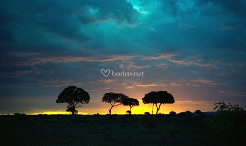 Atardecer en Masai Mara