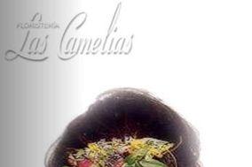 Las Camelias - Complementos