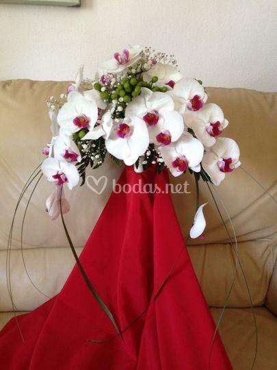 Arco de orquídea