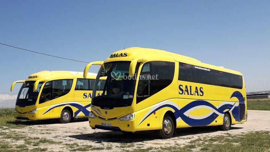 Autocares Salas