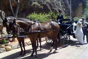Carlos - Carruajes de caballos