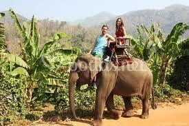Excursión con elefante