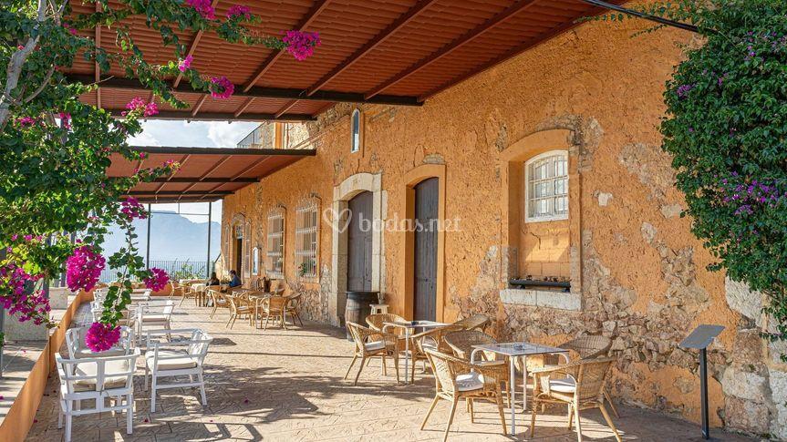Terraza vermouth