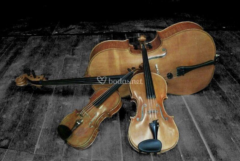 Trio de cuerda