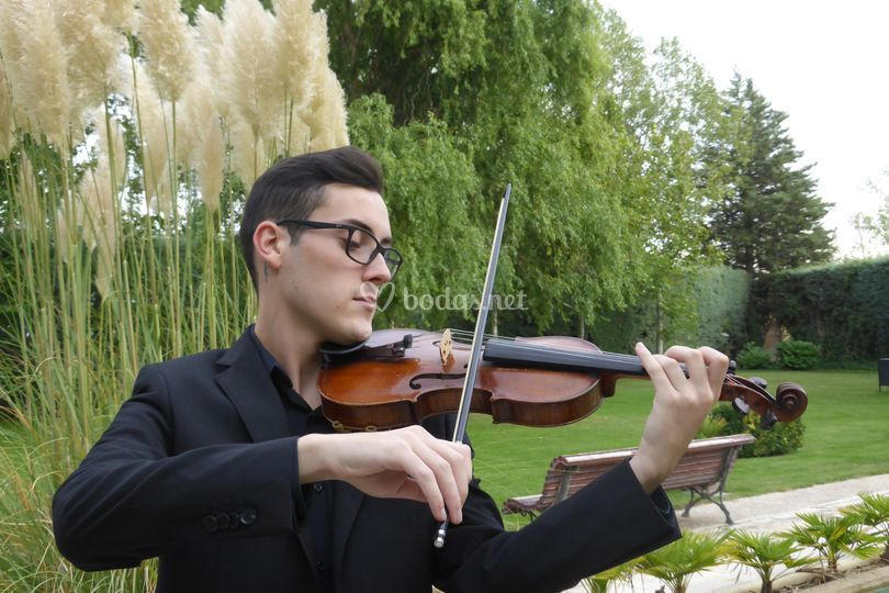 Álex, violín