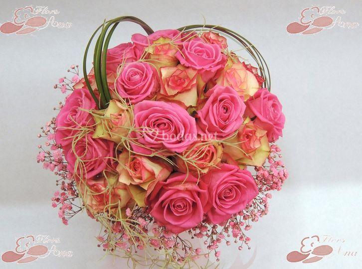 Flors Ana