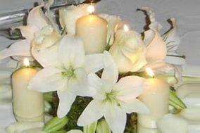 Flores y Plantas Sant Rafel