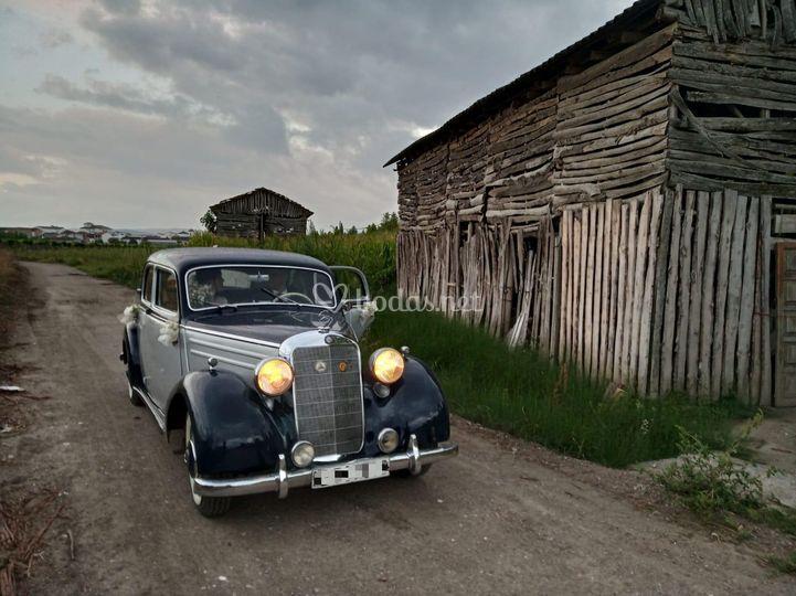 Mercedes 170 SD