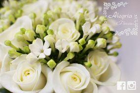 Flores Alegría