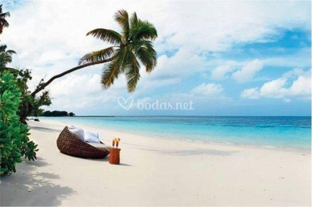 Islas Mauricio, Zanzibar