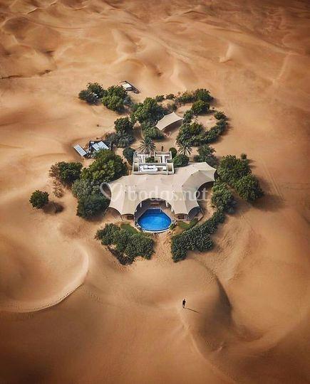 Oasis Dubai