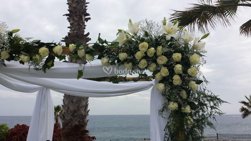Arco de rosas blancas