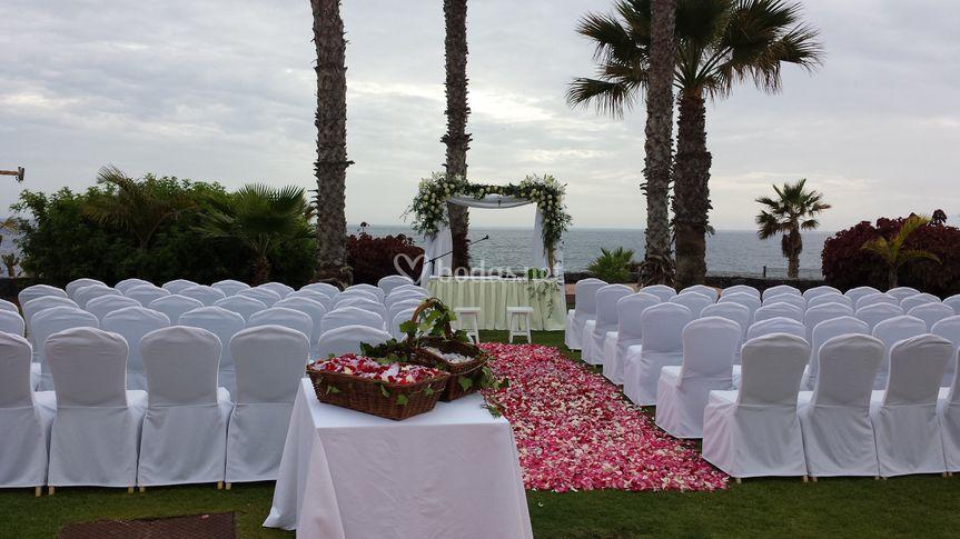 Arco con alfombra de petalos