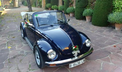 My Little Wedding Beetle