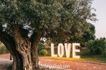 Love, letras de dos metros