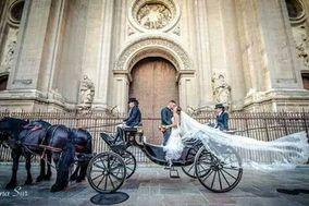 María José Alazar - Carros de caballos