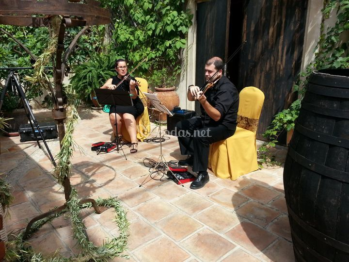 Duo de violín y viola