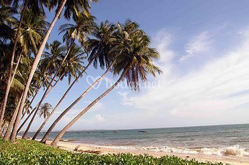 Playas asiáticas