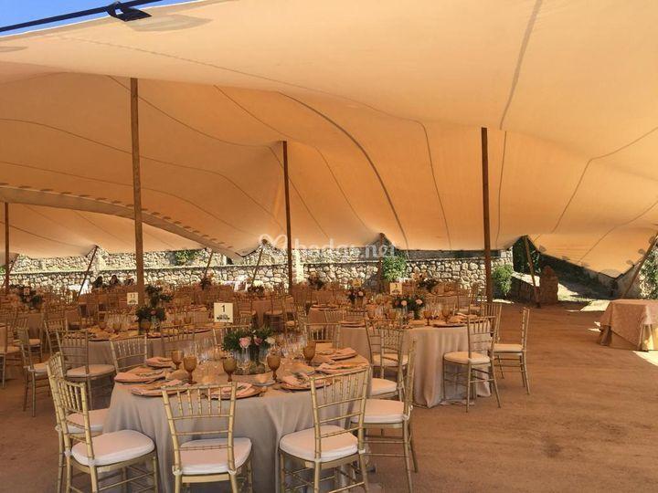 Elastic Tents