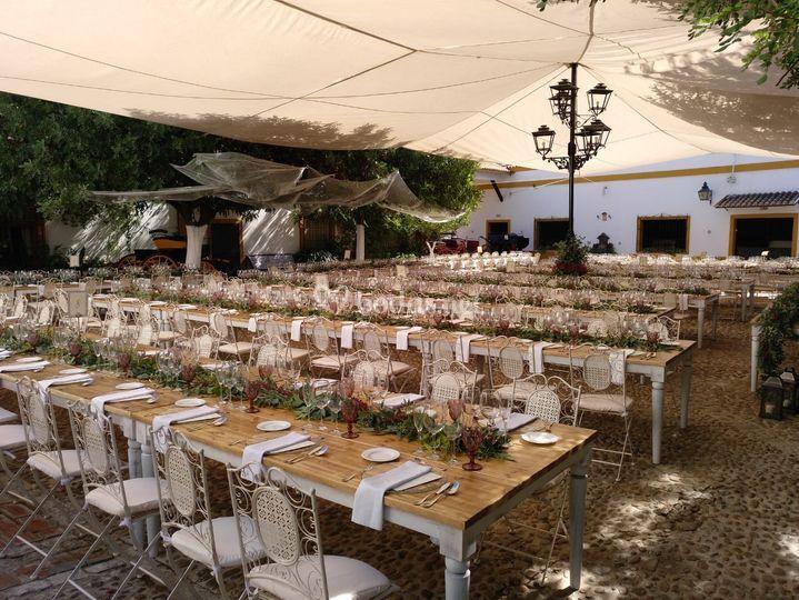 Casa del Caballo Andaluz