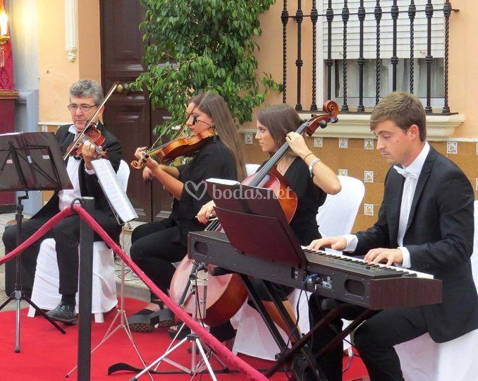 Cuarteto Schubert -Sevilla