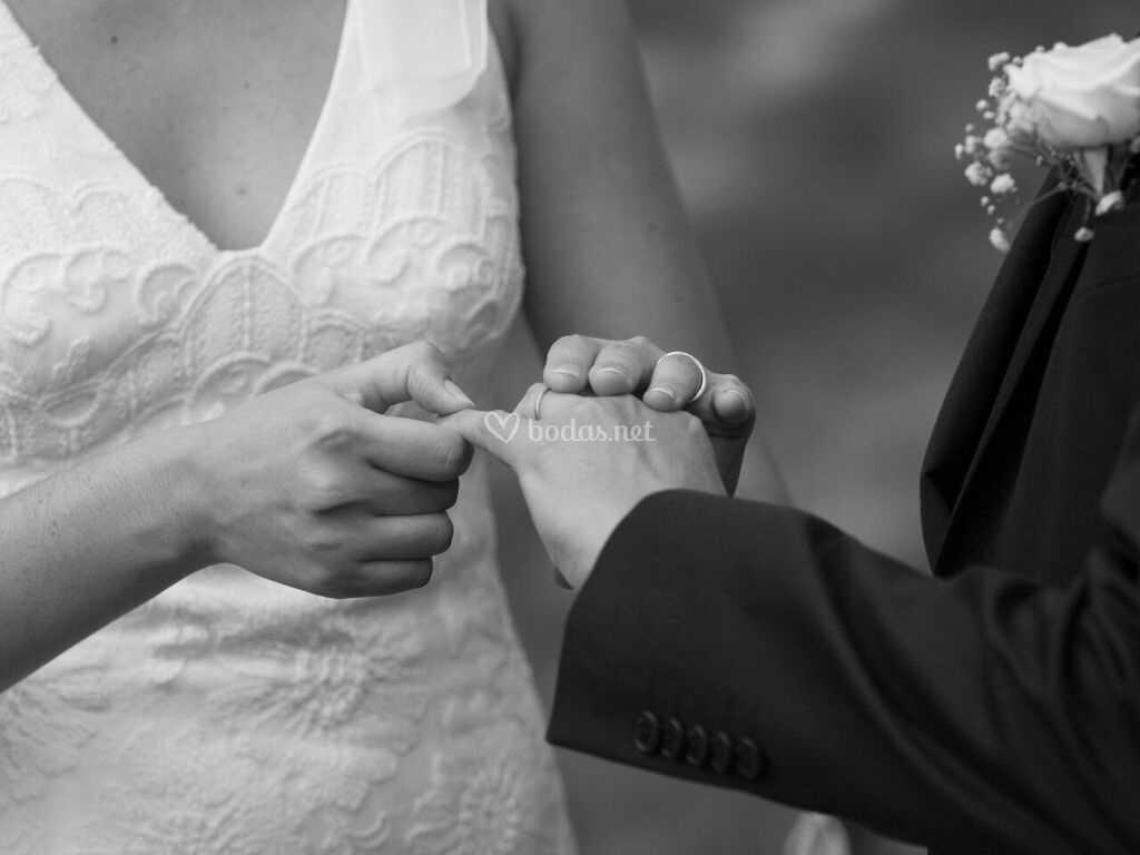 Ceremonia De Oh Belle Amour Foto 24